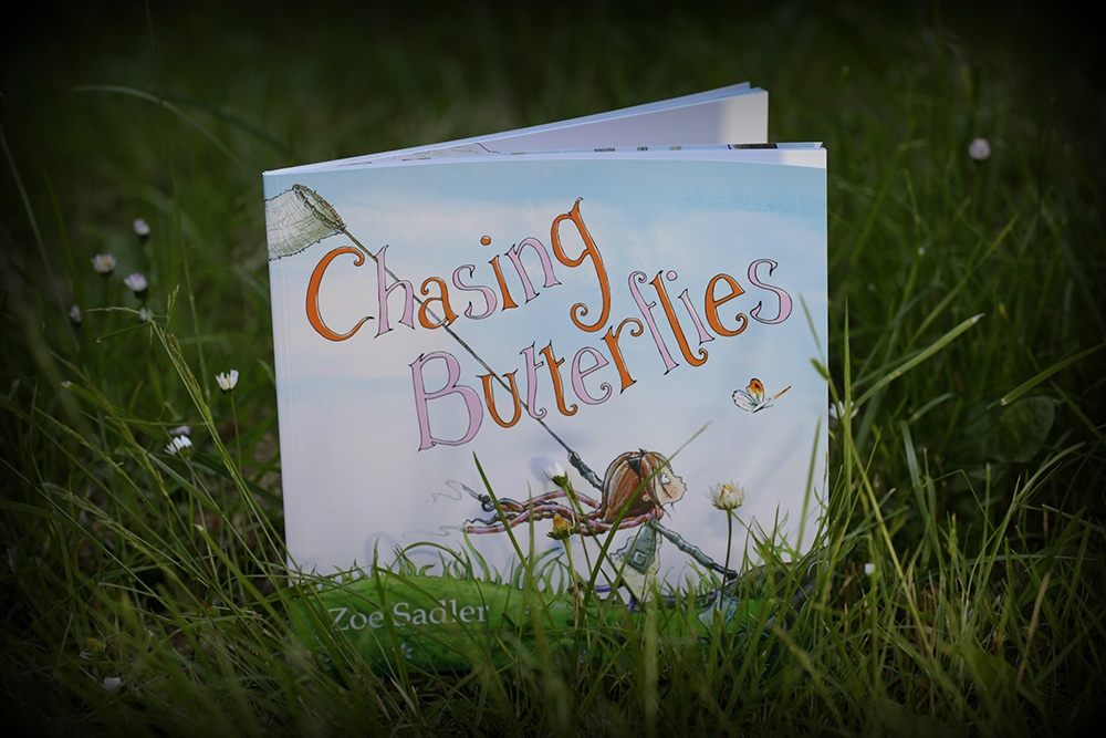 Chasing Butterflies. Photography credit Stephen Candy. Book stood up in the grass
