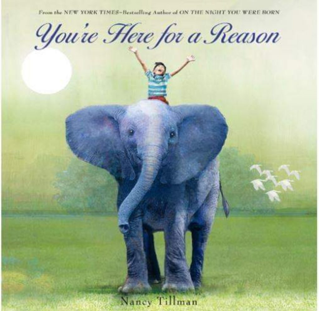 Children's book You're Here for a Reason front cover
