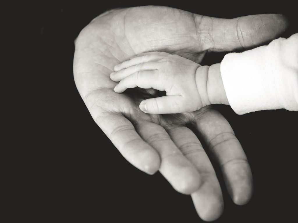 Baby's hand in adults hand. Photography credit: Liane Metzler