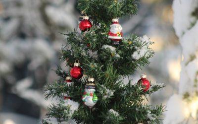 Christmas on the NICU